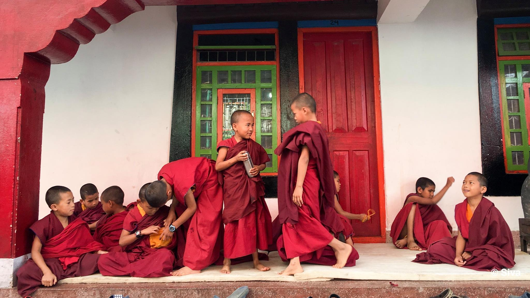 Playful Monks, Sikkim